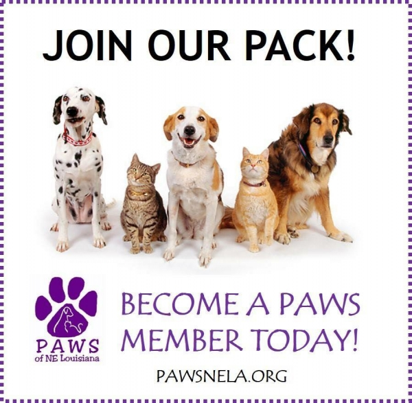 PAWS Memberships